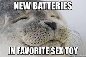 Meme Sex Toy - new batteries in favorite sex toy satisfied seal meme generator