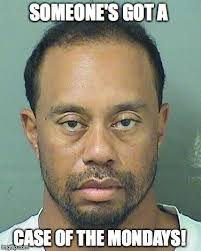 Case Of The Mondays Meme - image tagged in tiger woods drunk imgflip
