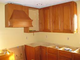 Beech Kitchen Cabinets by Wall Cabinets Kitchen Home Design Ideas And Pictures