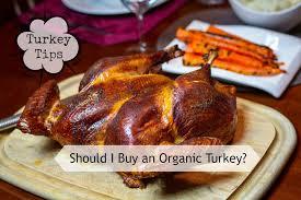 turkey tips should i buy an organic turkey thanksgiving