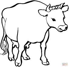 cow 1 coloring page free printable coloring pages