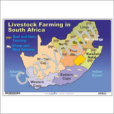 Map Of South Africa by Map Of Livestock Farming In South Africa U2013 Depicta