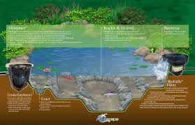 garden aquascape pond schema design for garden landscaping ideas