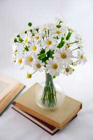 daisy bouquet of flowers flower arrangements white flower