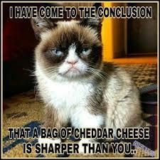 Tardar Sauce Meme - pin by melinda hansen on tardar sauce pinterest grumpy cat cat