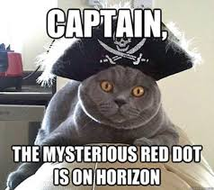 Pirate Meme - image result for pirate memes pirate memes pinterest memes