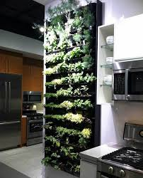 indoor kitchen garden ideas stylish kitchen wall herb garden and best 25 kitchen herbs ideas