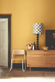 shades of yellow interior paint clanagnew decoration