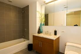 Bathroom Design Tips Colors Bathroom Wonderful Small Bathroom Decor With Brown Textured Wood