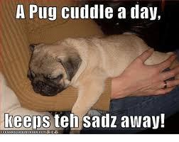 Depressed Pug Meme - 25 best memes about memes memes meme generator