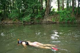 wild swimming images Wild swimming in the loire valley baignade sauvage en val de loire jpg