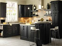 Black Paint For Kitchen Cabinets Kitchen Kitchen Cabinet Painting Ideas Colors For Clean