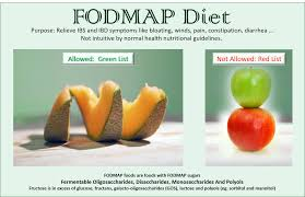 Fod Map Ibs Pitfalls And Paths Of The Fodmap Diet Nutri Fixit Health Hub