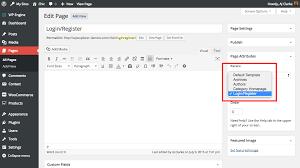 creating a custom login page chic wordpress theme
