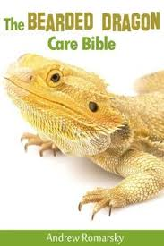 bearded dragon lighting guide lighting is vital for beardies please make sure you do your