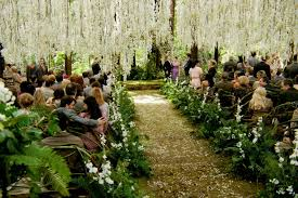 wedding party ideas unique wedding ceremony wedding party ideas make your wedding