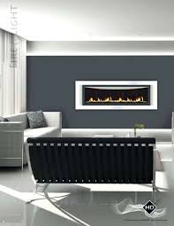 cool napoleon fireplaces suzannawinter com