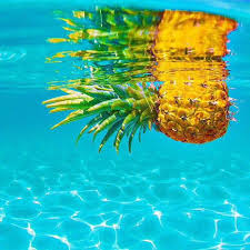 California Cool Scents Tropicana Free 1pc Palm Hang Outs Aroma Rand 1010 best tropical images on jungles paintings and