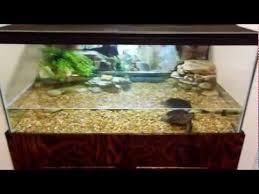 semi aquatic turtle tank set sequa