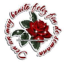imagenes de feliz inicio de semana con rosas imágenes de fin de semana en movimiento