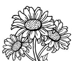 New Images Of Sunflower Coloring Pages Flowers Stalk Bouquet Sunflower Coloring Page