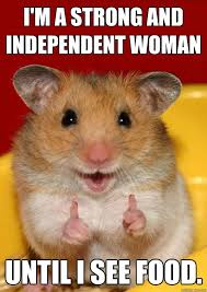 Independent Woman Meme - i am a strong and independent woman funny hamster meme picture