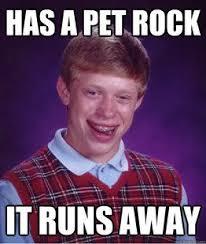 Funny Rock Memes - pet rock funny meme funny memes