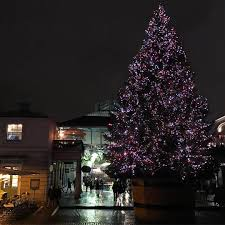 seven things you never knew about the covent garden christmas tree