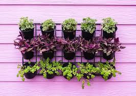 Vertical Garden Ideas Think Green 20 Vertical Garden Ideas