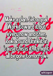 a plan set a goal work toward it but every now and then look