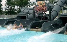 Michigan wild swimming images Find outdoor and indoor water park fun in michigan jpg