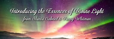 Divine Light Abundance Essences Of Divine Light