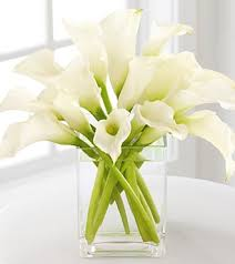 Calla Lily Vase Life Table Flowers Google Image Result For Http Callalilybouquets Net