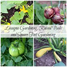 square foot gardening flowers lasagna gardening raised beds and square foot gardens oak hill
