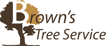 browns tree tree service haltom city tree removal tree trimming browns
