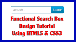 functional search box design using html5 u0026 css3 for your website