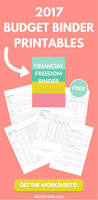 Financial Spreadsheet 25 Best Budget Worksheets Ideas On Pinterest Free Budget