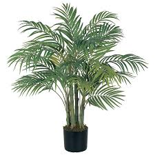 shop nearly 36 in green palm tree at lowes