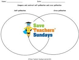 pollination and cross pollination lesson plan and worksheets venn