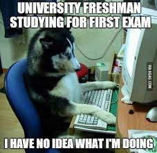 Hilarious Memes on Exams for Whatsapp          dc    f ecbee c  e   dacfff          b    d    f f  c b  de bf   ea b