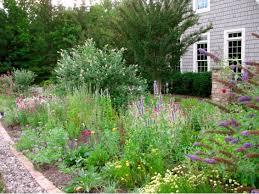 defining your home garden and travel my deer garden is full of