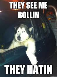 They See Me Rollin Meme - funny they see me rollin memes they best of the funny meme