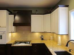Pro Kitchens Design Painting Your Cabinets 5 Questions You Always Wanted To Ask A Pro