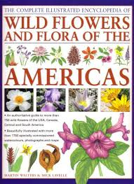 flower encyclopedia booktopia the complete illustrated encyclopedia of flowers
