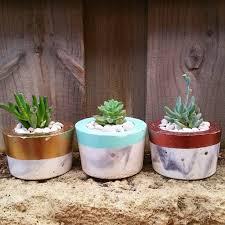 Concrete Planters Soft Marble Concrete Planters With Coloured Top U2013 Pot It Like It U0027s