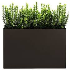 the 20 best images about outdoor planters on pinterest
