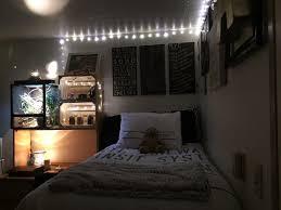 Coolest Dorm Rooms Ever Cornell University Risley Hall Dorm Ideas Pinterest Dorm