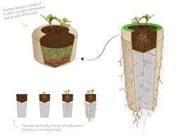 bio urn bios urn will turn you into a tree after you die bored panda
