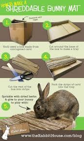 Cool Pets Rabbit Hutch Best 25 Rabbit Toys Ideas On Pinterest Diy Bunny Toys Rabbit