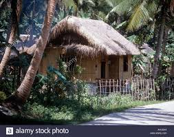 traditional house quezon province philippines stock photo